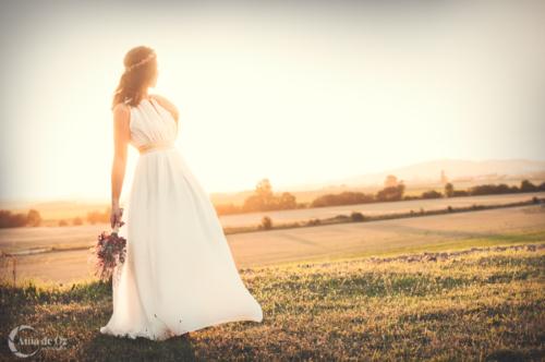 fotógrafo de bodas en alava